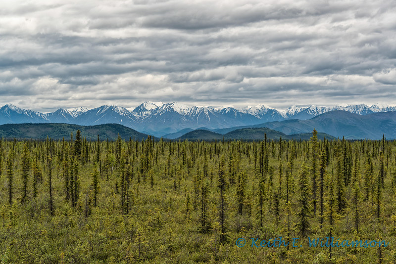 Clouds over the Yukon taiga
